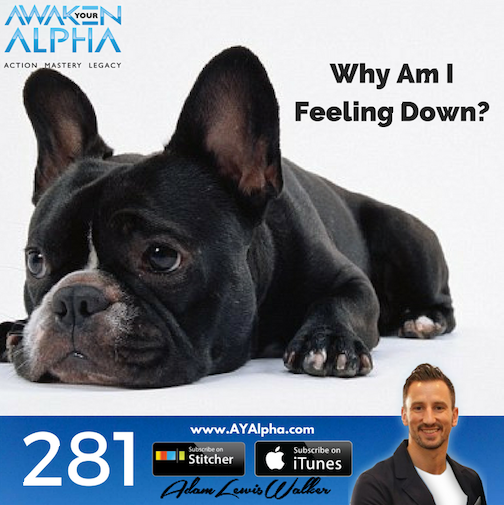 281# Why Are You Feeling Down?