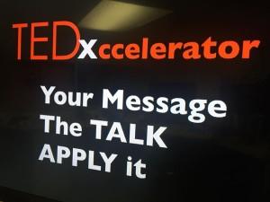 TEDxcellerator