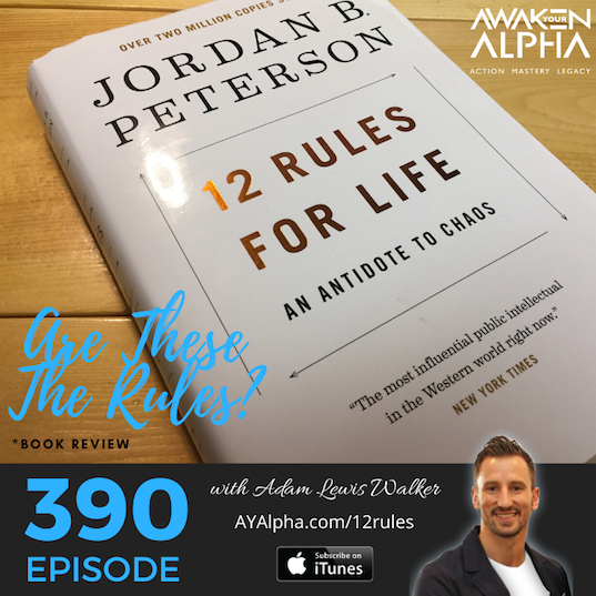 390# Are These The 12 Rules For Life?  *Jordan Peterson