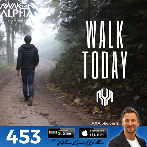 453# Did You Go For a Walk Today?